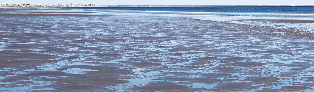 cold-beach