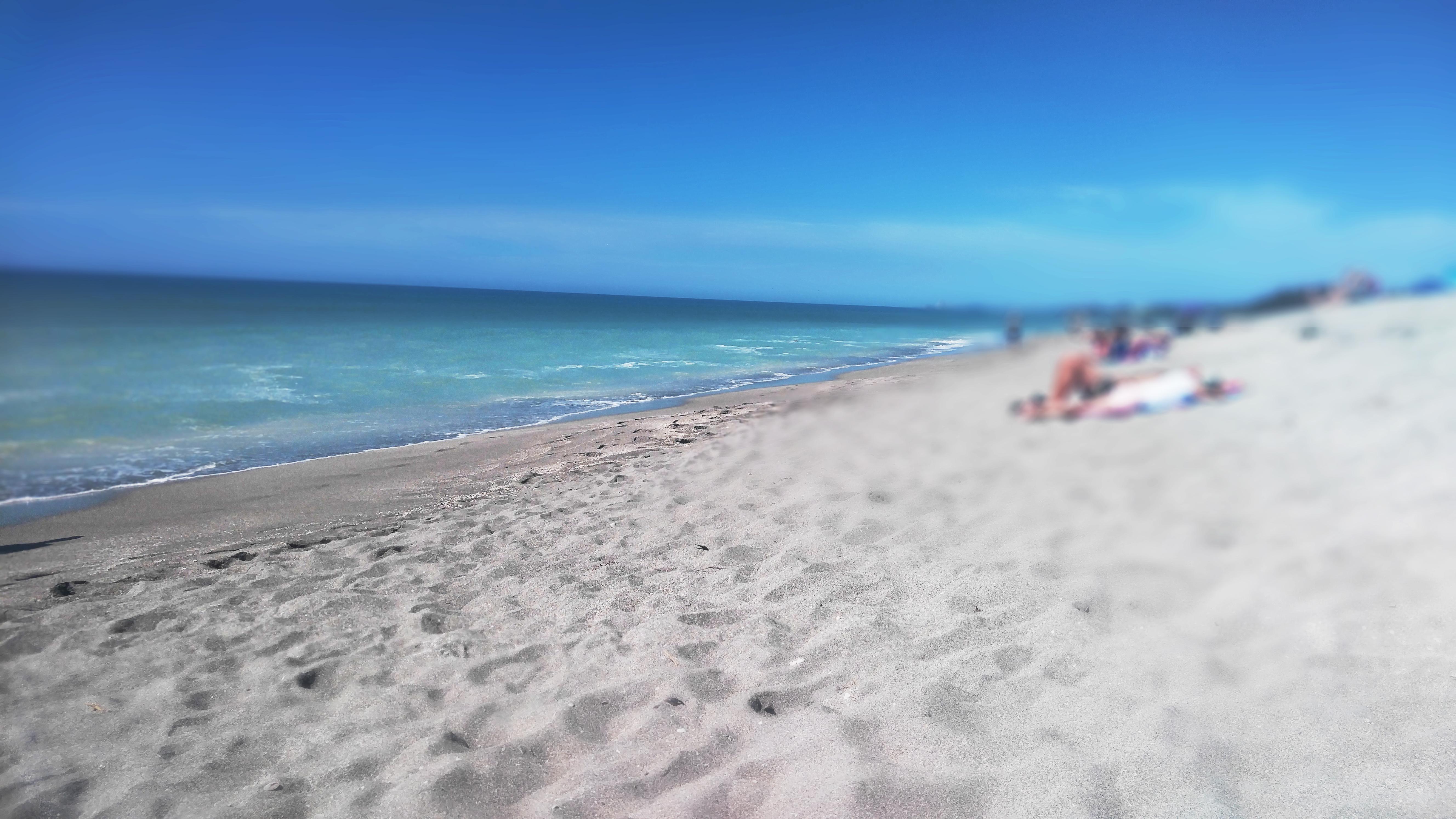 Turtle Beach Sarasota 2016 copy