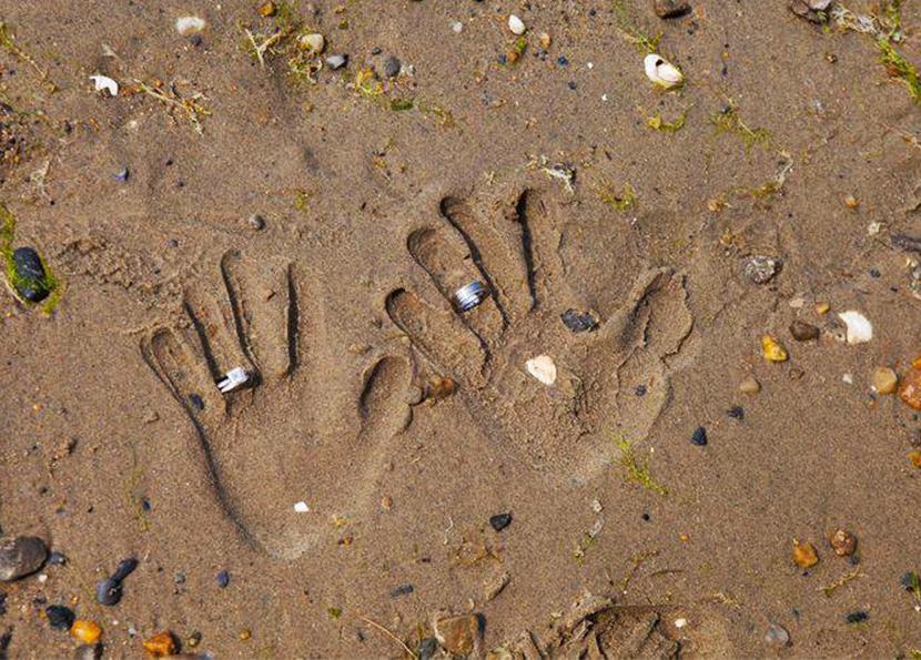 sandhands