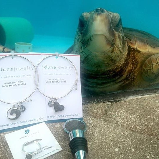 Sea Life Jewelry and Accessories