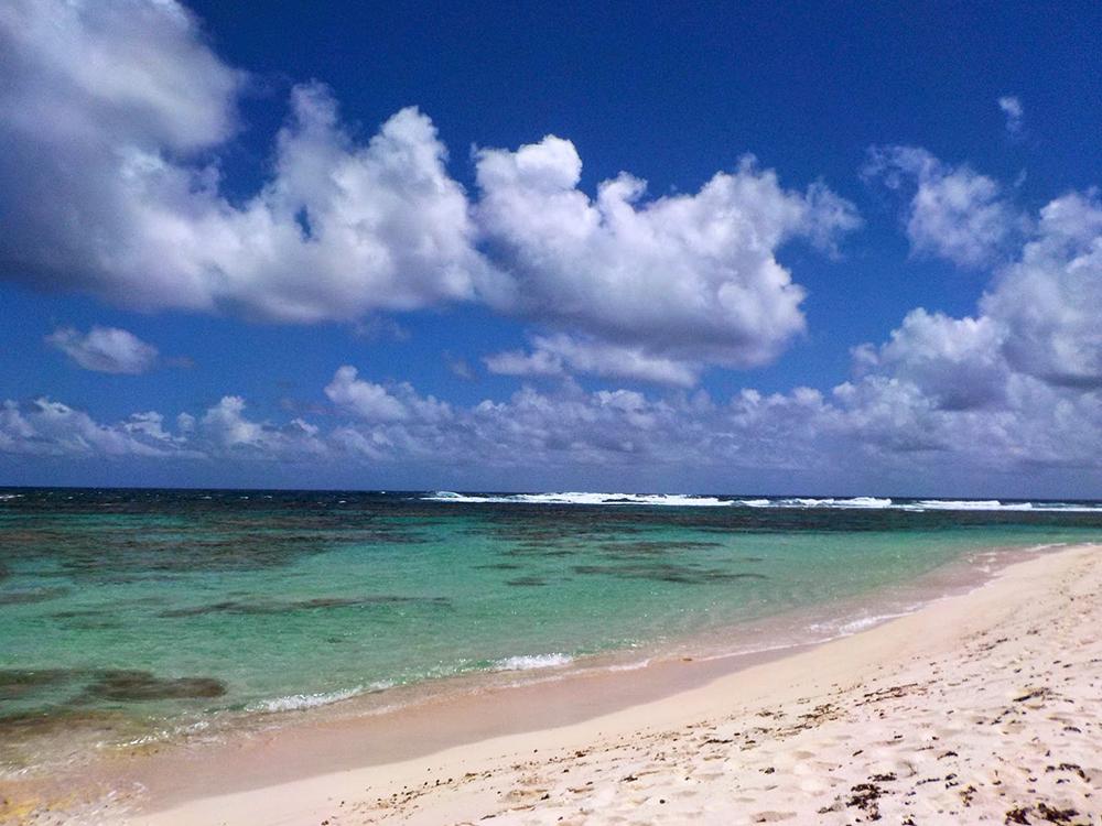 pink-sand-beaches-AnegadaBeach